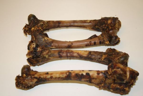 Rehschulterknochen